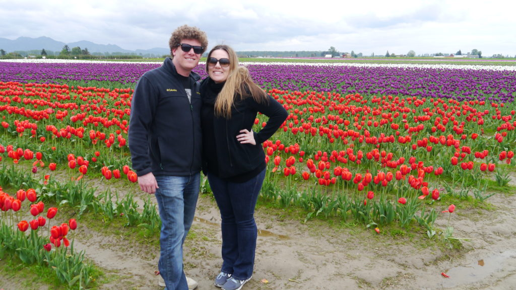 Tulips - SOMTS